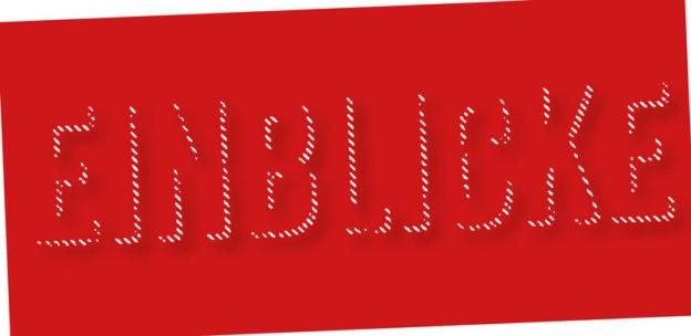Logo Ausstellung Einblicke